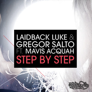 laidback luke feat example natural disaster zypicharre