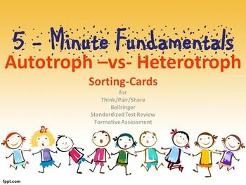 what is an example of a heterotroph in biology
